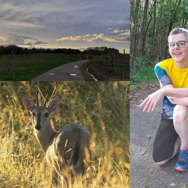 Dove correre in provincia di Novara? 6 percorsi facili nella natura